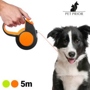 Laisse pour Chien Extensible Pet Prior (5 m)