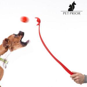 Lanceur de Balles pour Chiens Pet Prior